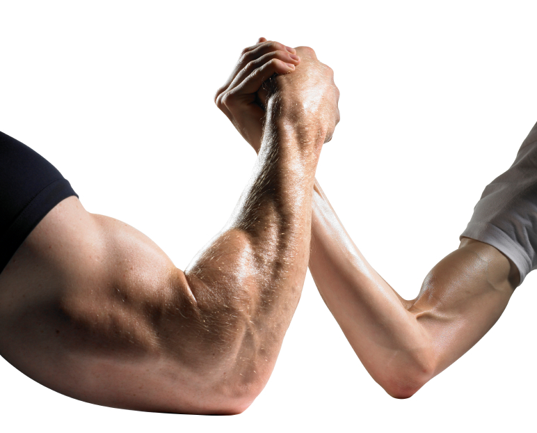 the difference between being muscley and being shredded